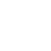 Icon system_w
